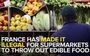 France became the first country in the world to pass a law prohibiting large supermarkets from throwing away good quality food.